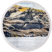 Seals And Rock Scupltures Round Beach Towel
