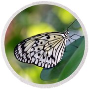 Beautiful Black N White Rice Paper Butterfly Round Beach Towel