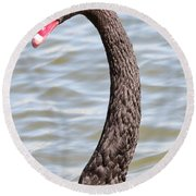 Beautiful Black Swan Round Beach Towel