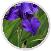 Beautiful Purple Iris Flower Art Round Beach Towel