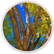Beautiful Blue Sky Autumn Day Round Beach Towel