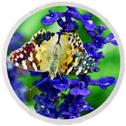 Beautiful Butterfly On A Flower Round Beach Towel