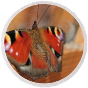 Beautiful Butterfly Round Beach Towel