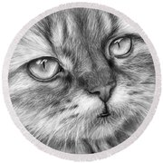 Beautiful Cat Round Beach Towel by Olga Shvartsur
