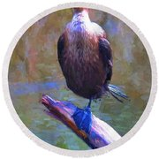 Beautiful Cormorant Round Beach Towel