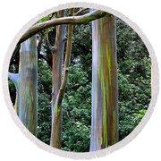 Beautiful Eucalyptus Round Beach Towel