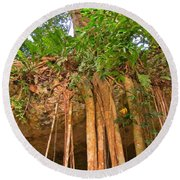 Beautiful Forest Round Beach Towel