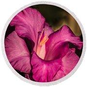Beautiful Gladiolus Round Beach Towel