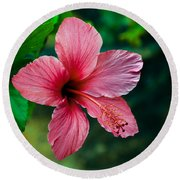 Beautiful Hibiscus Round Beach Towel