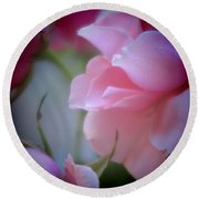 Beautiful Lavender And Purple Roses Round Beach Towel