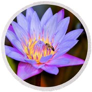 Beautiful Lily And Visiting Bee Round Beach Towel