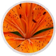 Beautiful Lily Round Beach Towel