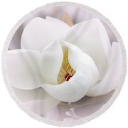 Beautiful Magnolia Bloom Round Beach Towel