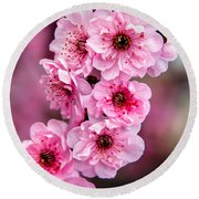 Beautiful Pink Blossoms Round Beach Towel by Robert Bales