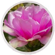 Beautiful Pink Cactus Flower Round Beach Towel