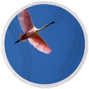 Beautiful Pink Roseate Spoonbill Round Beach Towel