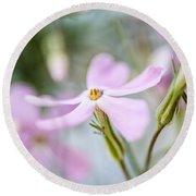 Beautiful Pink Spring Flowers Round Beach Towel