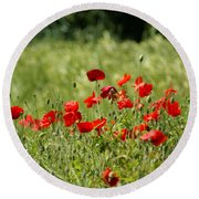 Beautiful Poppies 1 Round Beach Towel