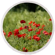 Beautiful Poppies 3 Round Beach Towel