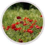 Beautiful Poppies 3 Round Beach Towel
