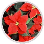Beautiful Red Poinsettia Christmas Flowers Round Beach Towel
