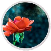 Beautiful Red Rose Round Beach Towel