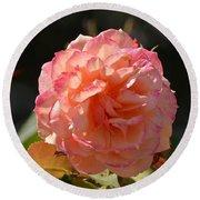 Beautiful Rose Blossom Round Beach Towel