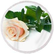 Beautiful Rose On White Round Beach Towel
