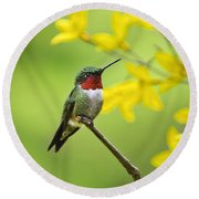 Beautiful Summer Hummer Round Beach Towel