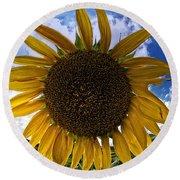 Beautiful Sunflower Round Beach Towel