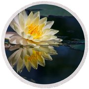Beautiful Water Lily Reflection Round Beach Towel