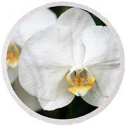 Beautiful White Phanaenopsis Orchids Round Beach Towel
