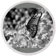 Butterfly Beauty In Nature Round Beach Towel