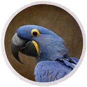Beauty Is An Enchanted Soul - Hyacinth Macaw - Anodorhynchus Hyacinthinus Round Beach Towel