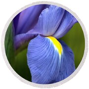Beauty Of Iris Round Beach Towel