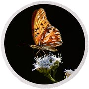Beauty Of Nature Butterfly Brazil 2 Round Beach Towel