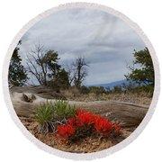 Beauty On 25 Mesa Panoramic Round Beach Towel