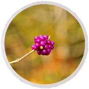 Beautyberry Round Beach Towel