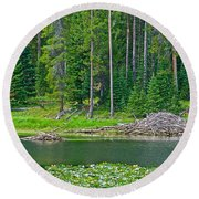Beaver Dam In Heron Pond In Grand Teton National Park-wyoming Round Beach Towel