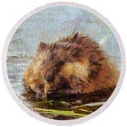 Beaver Portrait On Canvas Round Beach Towel