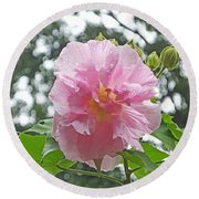 Bedazzled By The Light Louisiana Confederate Rose Round Beach Towel
