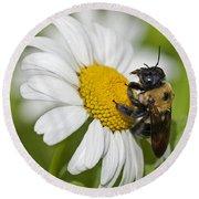 Bee And Daisy Round Beach Towel