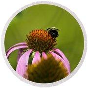 Bee And Echinacea Flower Round Beach Towel