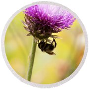 Bee And Thistle Round Beach Towel