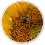 Bee Business Round Beach Towel
