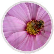 Bee Cosmos Round Beach Towel