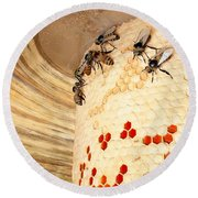 Bee Hive Round Beach Towel