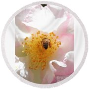 Bee In Camellia Round Beach Towel