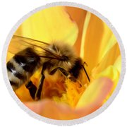 Bee In Flower Round Beach Towel