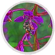 Bee In Hdr Round Beach Towel